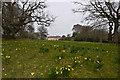 ST7734 : Stourhead House by Ian Capper