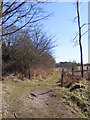 TM4769 : Footpath off Minsmere Road by Adrian Cable