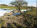 SJ0978 : Stream flowing under footbridge on Clwydian Way by Maggie Cox