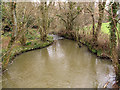 TQ3728 : Pool below the bridge by Stephen Craven