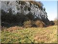 TQ6078 : Chalk Cliff, Chafford Gorge by Roger Jones