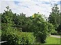 G9248 : Leitrim flag, Rossinver by Richard Webb