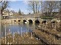 SP4416 : Seven Arches Bridge, Blenheim Park by David P Howard