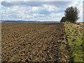 NZ0666 : Farmland northwest of Nafferton Farm by Mike Quinn