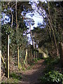 TM4770 : Footpath to High Street by Adrian Cable