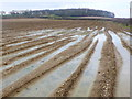 ST7315 : Waterlogged Fields at Cook's Lane Wood by Nigel Mykura