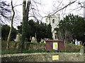 NU1908 : St James Church, Shilbottle by JThomas