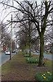 SJ3894 : Utting Avenue East by Alan Murray-Rust