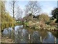 TQ2882 : Lake In Regent's Park by Paul Gillett