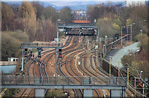 SJ8499 : Victoria Station by Peter McDermott