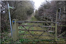 SP9523 : Bridleway along a disused road by Philip Jeffrey
