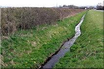 SP9523 : Roadside brook by Philip Jeffrey