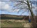 NU0435 : Beside Bootjack Wood by Richard Webb