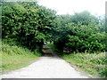 SO2802 : Access lane to Nant-y-gollen Farm east of Trevethin, Pontypool by Jaggery