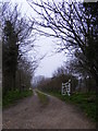 TM4770 : Sandlings Walk Path off Westleton Road by Adrian Cable