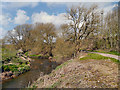 SJ7485 : River Bollin, Bollin Valley Way by David Dixon