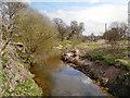 SJ7585 : River Bollin by David Dixon