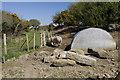 SW4526 : Pig house near Sheffield Quarry by Elizabeth Scott