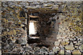 J5263 : Mahee/Nendrum Castle (interior) (2) by Albert Bridge