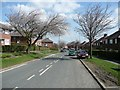 SE1321 : Highfield Road in April by Humphrey Bolton
