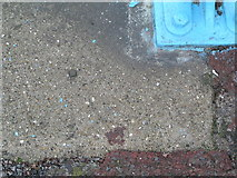 TF5663 : Rivet: Skegness, Tower Esplanade by Brian Westlake