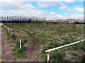 ST3487 : Former home pitch of Llanwern AFC, Newport by Jaggery