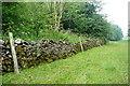 SK1861 : Bridleway through Long Dale by Graham Horn