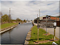 SJ5586 : St Helens (Sankey) Canal, near Fiddler's Ferry by David Dixon