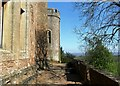 SS9943 : Ramparts, Dunster Castle by nick macneill