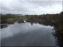 NY9170 : The River North Tyne, Chollerford by JThomas