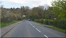 TQ9144 : Smarden Road towards Pluckley by Julian P Guffogg