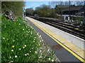 TQ8951 : Daffodils at Lenham station by Marathon