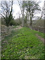 SP7235 : Path by disused Buckingham Canal by Philip Jeffrey