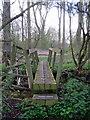 SP7235 : Path towards Hyde Lane Farm by Philip Jeffrey