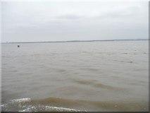 SJ3681 : Mersey estuary near Eastham Locks by Christine Johnstone