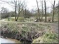 SJ7255 : Short boardwalk by a pond by Christine Johnstone