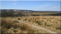 NS5161 : Path, Hurlet Hill by Richard Webb