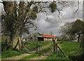ST4119 : Derelict barn, Burrow by Derek Harper