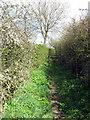 SP8525 : Footpath towards Ash Farm by Philip Jeffrey