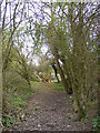 TM3976 : Footpath to the A144 Bramfield Road by Adrian Cable
