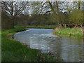TQ0253 : River Wey Navigation by Alan Hunt