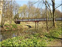 SD7009 : Dobson Bridge, Queen's Park by David Dixon