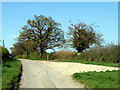 TQ6594 : Private road to Great Cowbridge Grange Farm by Robin Webster
