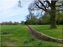 TL6804 : Haha Hylands Park by PAUL FARMER