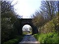 TM3974 : Railway Bridge on Edwards Lane by Adrian Cable
