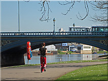 SK5838 : Trent Bridge and a jogger by John Sutton
