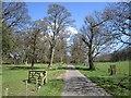 NU0411 : Eslington Park by Richard Webb