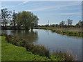 TQ0357 : River Wey Navigation by Alan Hunt