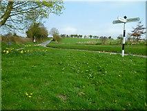 SU1449 : The Orange Way in Wiltshire (279) by Shazz