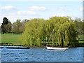 TQ4774 : Boats on Danson Park lake by Stephen Craven